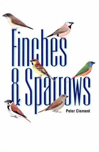 Download Finches & sparrows
