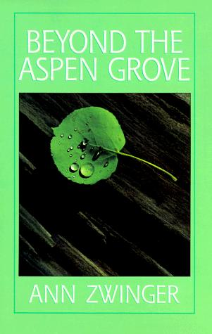 Beyond the aspen grove