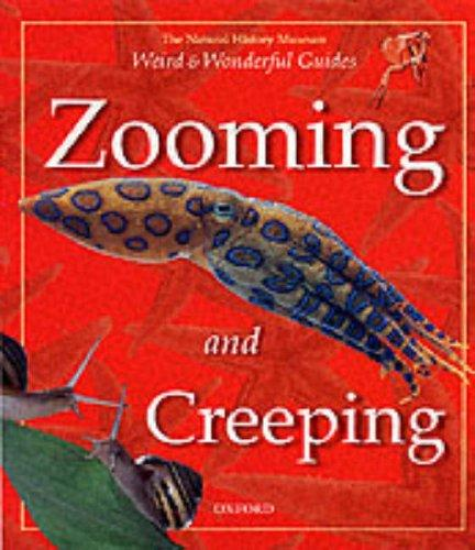 Zooming and Creeping (Weird & Wonderful) by Barbara Taylor